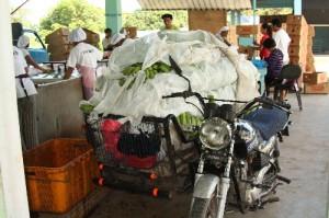 バイクでパッキングセンターまで運んでいる生産者(ミンダナオ島ツピ)