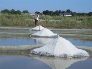 粗塩の収穫
