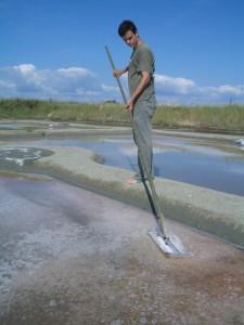 一番塩の収穫