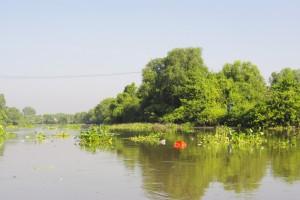 ブンガワン・ソロ川