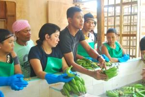バナナの洗浄・箱詰め方法を指導するATCスタッフ(中央男性)