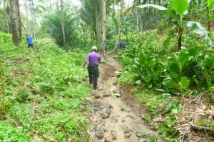 東ネグロス州では、奥深い山の中にバランゴンバナナを植えている生産者もいます。