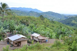 生産者が暮らしている山間の地域