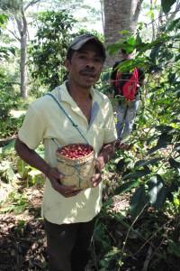 マヌレテ村のコーヒー生産者