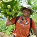 バナナニュース264号:バランゴンバナナ産地紹介 ~ミンダナオ島マキララ~