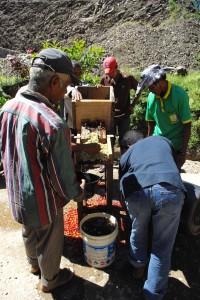 水洗式加工のオリエンテーション