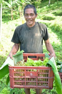 野菜の出荷をするボニファシオさん