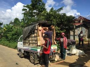 カンラオン産地でのバランゴンバナナの集荷