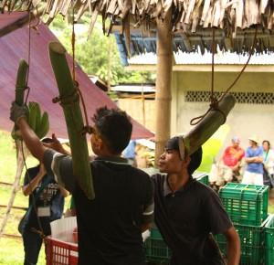 バナナの集荷に参加して房分けの技術を習得中