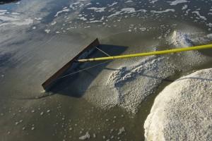 池底に結晶した粗塩を『ラス』と呼ばれる道具で収穫