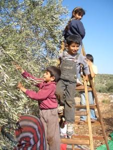 パレスチナの子どもたち