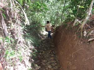 レニボイさんの畑に行くには、険しい山道を通らなければなりません。