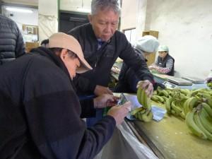 バナナの品質を確認しているアーウィン氏(手前)とレイ氏(奥)