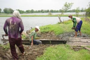 養殖池の堤防の修理作業中