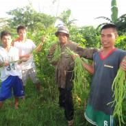 【バナナニュース281号】若者が農業を学ぶ カネシゲファーム・ルーラルキャンパス