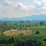 農薬空中散布の様子(南コタバト州)