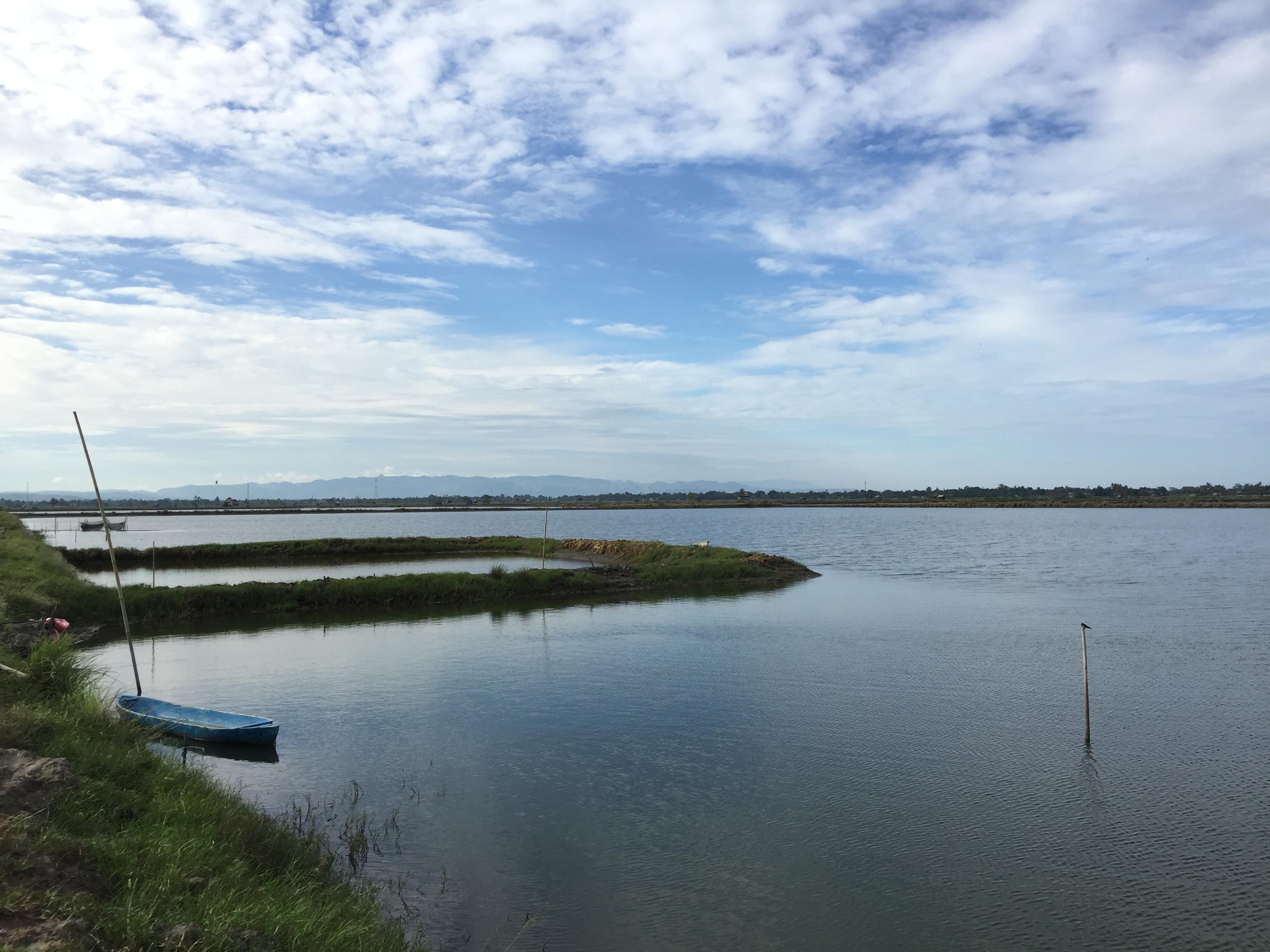 スラウェシ州マカッサルから車で3時間ほど北上したピンラン県沿岸部に広がる養殖池